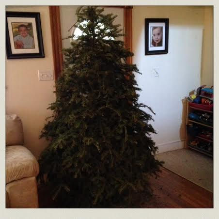 taking christmas tree down 3 - When To Take Christmas Tree Down