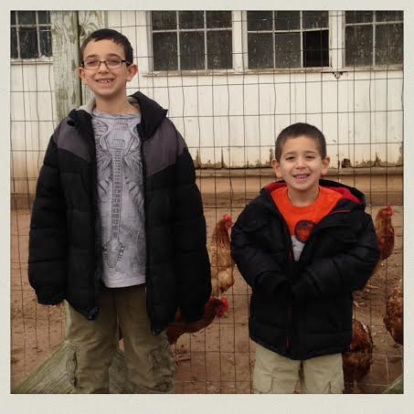 fish-family-farm-chicken-coup-boys