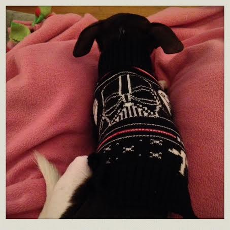 milo-star-wars-sweater