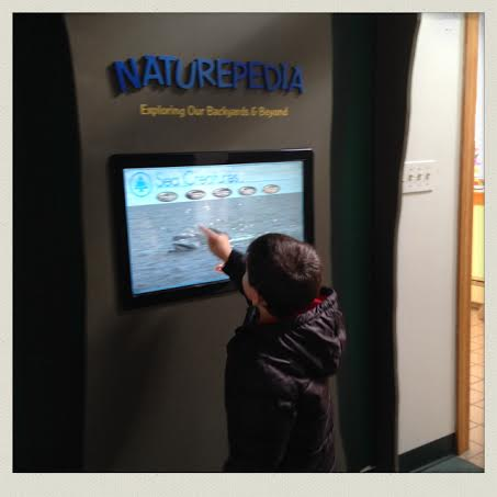 South-Shore-Natural-Science-Center-interactive