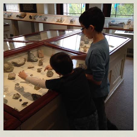 harvard-museum-of-natural-history-case-boys