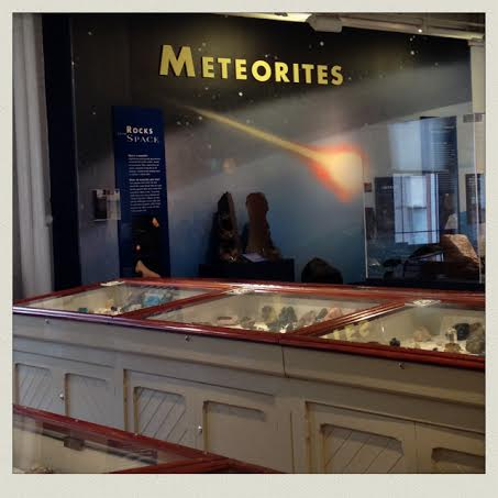 harvard-museum-of-natural-history-meterotires