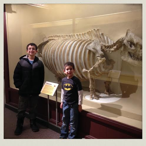 harvard-natural-history-museum-fossils-boys
