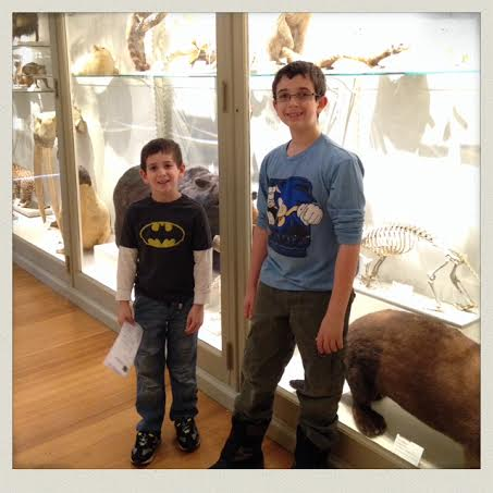 harvard-natural-history-museum-taxidermy-animals-case-boys