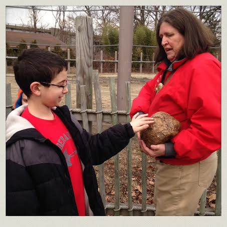 holding-elephant-poop-roger-williams-zoo-rhode-island-not-sure