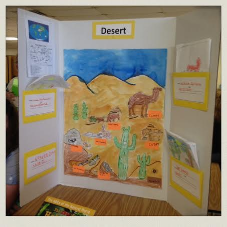 habitat-happening-first-grade-animal-presentation-board