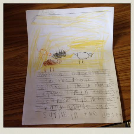habitat-happening-first-grade-animal-presentation-report