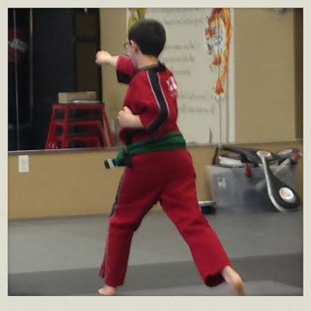 kenpo-getting-stripe-test-action2