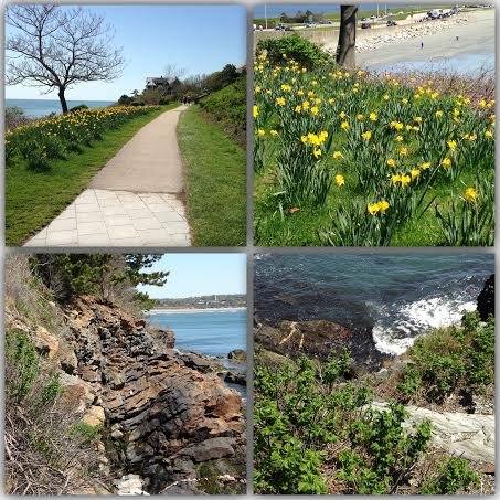 Newport cliff walk 2