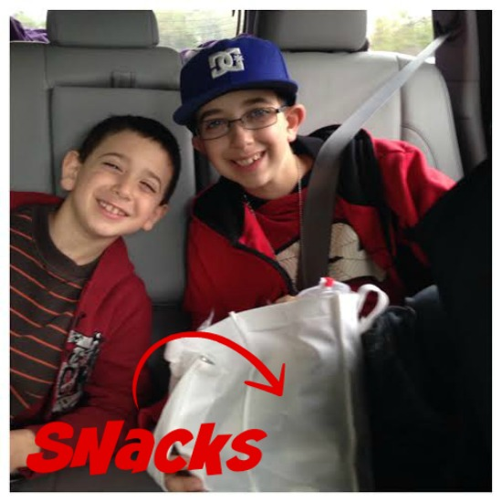 road trip essentials for families