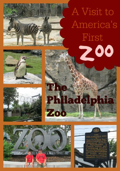 A Visit to America's First Zoo  The philadelphia zoo