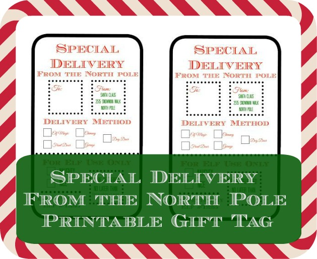 image regarding Free Printable North Pole Special Delivery Printable titled Exceptional Shipping Versus the North Pole Printable Reward Tag