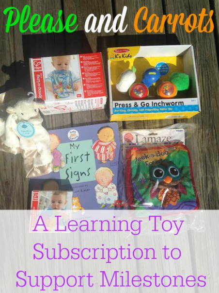 Please and Carrots A Learning Toy Subscription to Support Milestones
