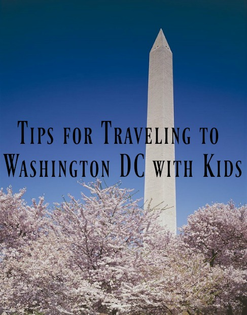Tips for Traveling to Washington DC with Kids