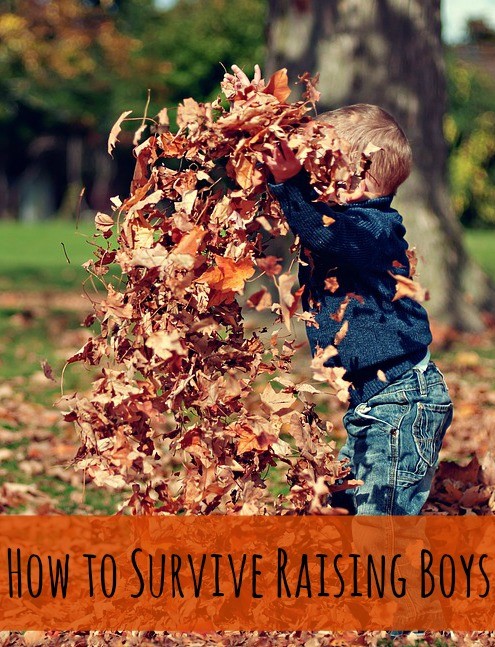 how-to-survive-raising-boys