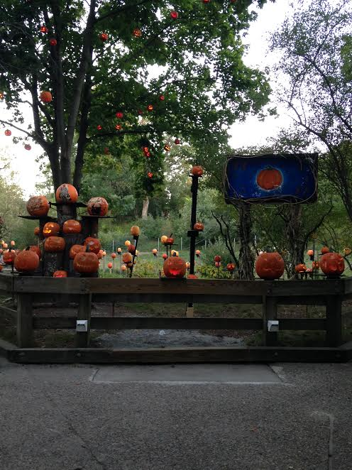 the-2016-jack-olantern-spectacular-at-roger-williams-park-zoo1