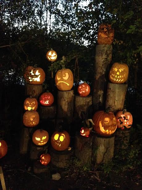 the-2016-jack-olantern-spectacular-at-roger-williams-park-zoo10
