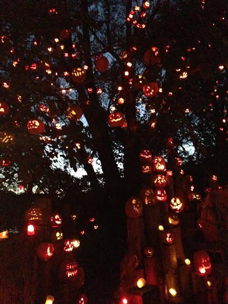 the-2016-jack-olantern-spectacular-at-roger-williams-park-zoo12