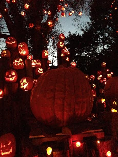 the-2016-jack-olantern-spectacular-at-roger-williams-park-zoo13