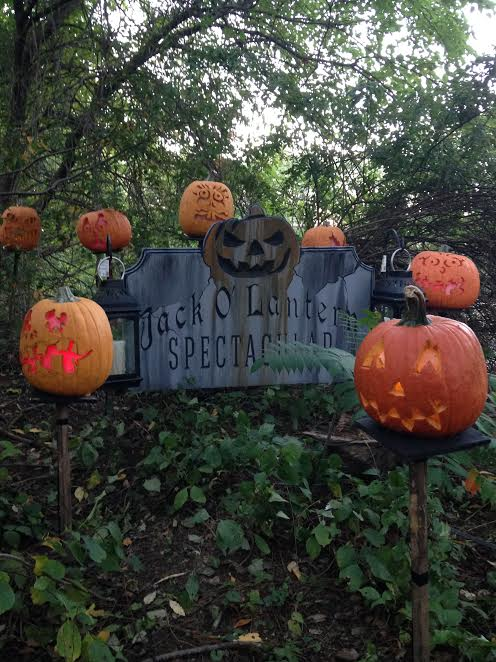 the-2016-jack-olantern-spectacular-at-roger-williams-park-zoo2