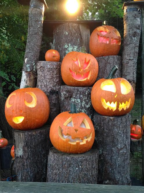 the-2016-jack-olantern-spectacular-at-roger-williams-park-zoo4