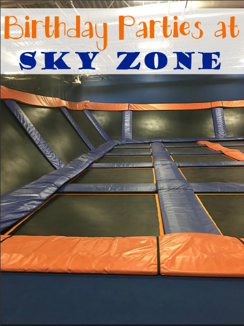 Did You Know They Offer Birthday Parties at Sky Zone Talk About FUN
