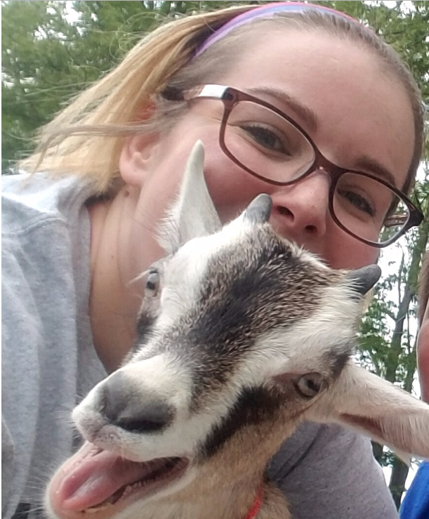 Do yoga with goats on the south shore in Massachusetts