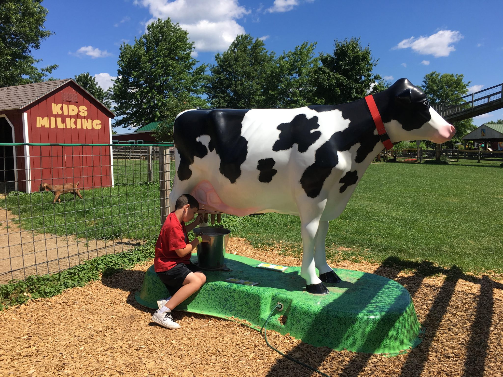 Summer fun at Davis Farmland in Sterling, MA