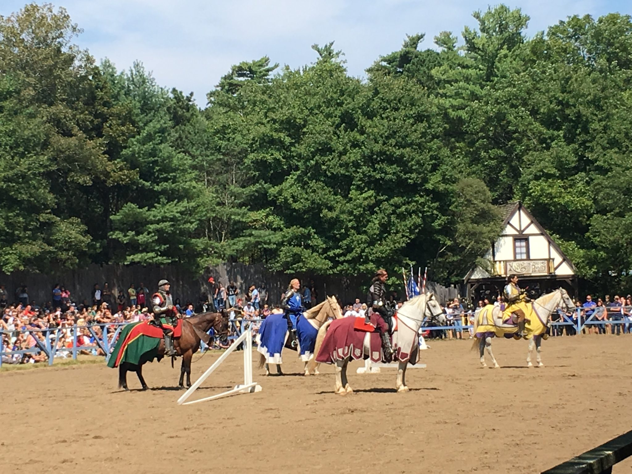 See a real life jousting show at King Richard's Faire!