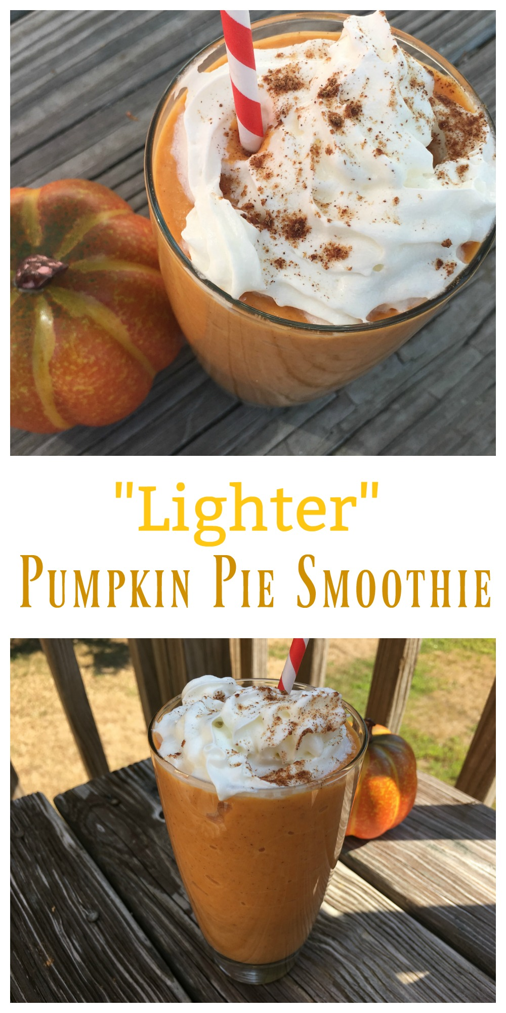 "If you are a pumpkin lover, try a delicious ""Lighter"" Pumpkin Pie Smoothie! It's filling, tasty and ready in just a few minutes."