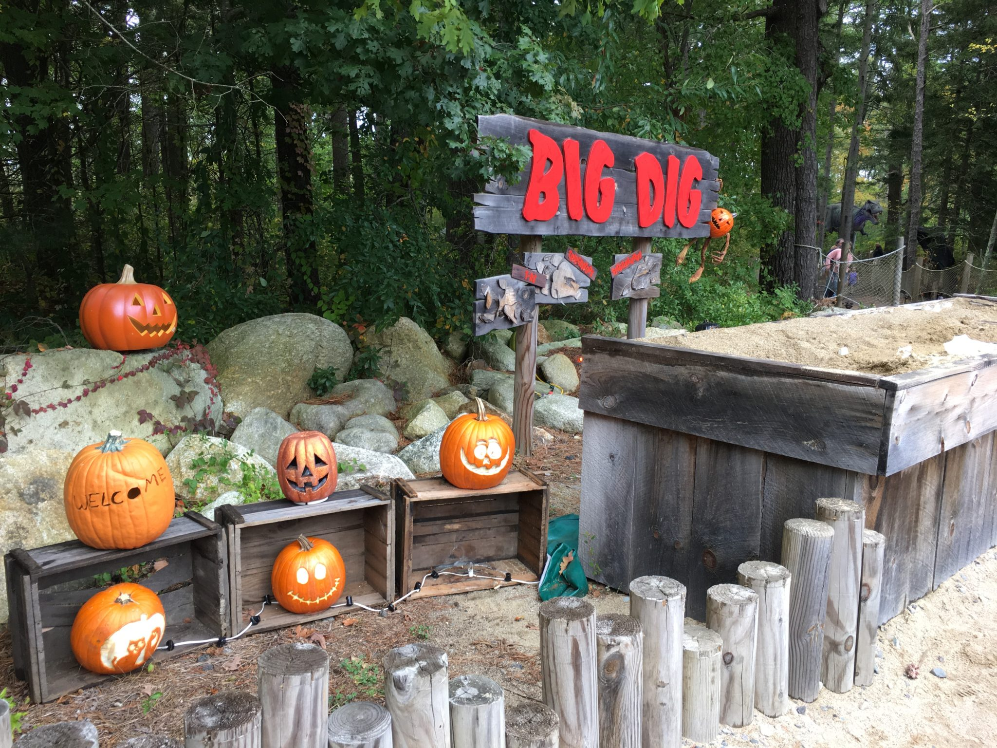 Halloween Fun at Edaville Family Amusement Park's Not So Spooky Halloween event being held weekends throughout October. It's fun for the whole family.