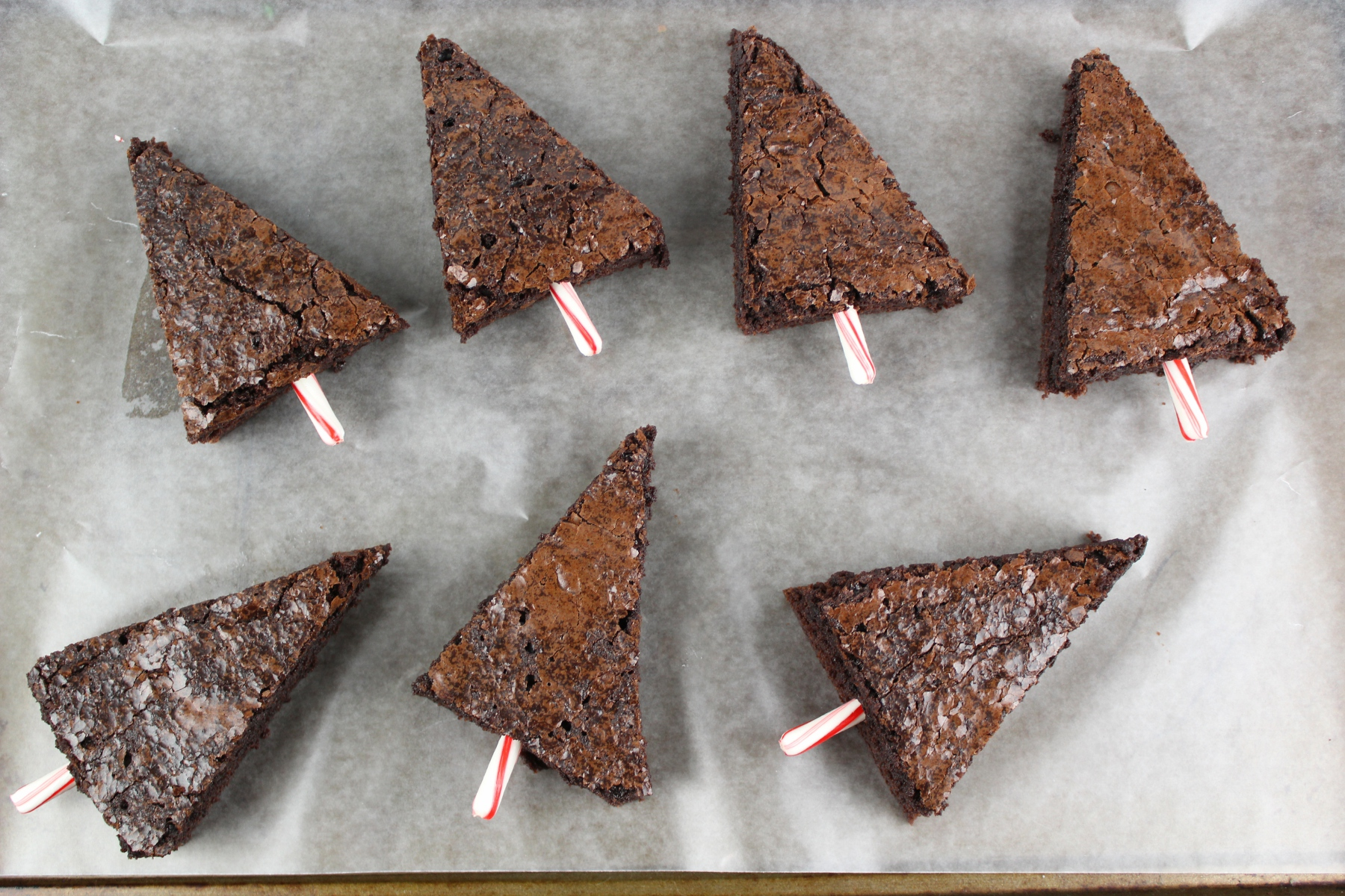 If you want to make a fun and festive Christmas treat this year, check out these Christmas Tree Brownies. They are easy to make & come out so cute!