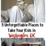 These 5 places are sure to be an unforgettable addition to any trip through Washington DC. Have a blast showing your kids one of the nation's most historic cities!