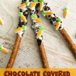 If you are looking for an easy Easter dessert to make this year, give these Chocolate Covered Easter Pretzels a try. They are festive and the combination of sweet & salty is sure to be a hit.