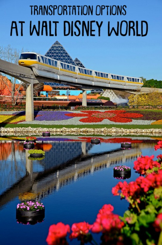 When you're at Walt Disney World take the time to enjoy all of the modes of transportation that are available. They're part of what makes a Disney vacation special.