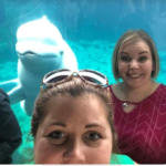 If you are looking for a unique adult aquarium experience, try Cocktails with Whales at the Mystic Aquarium. There you you sip cocktails with Beluga whales!