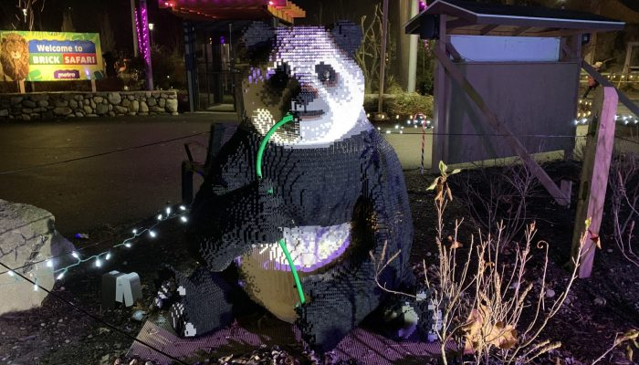 Explore the Brick Safari at the Stone Zoo During the ZooLights holiday light display! See over 40 life-sized animal sculptures made out of LEGO® bricks!