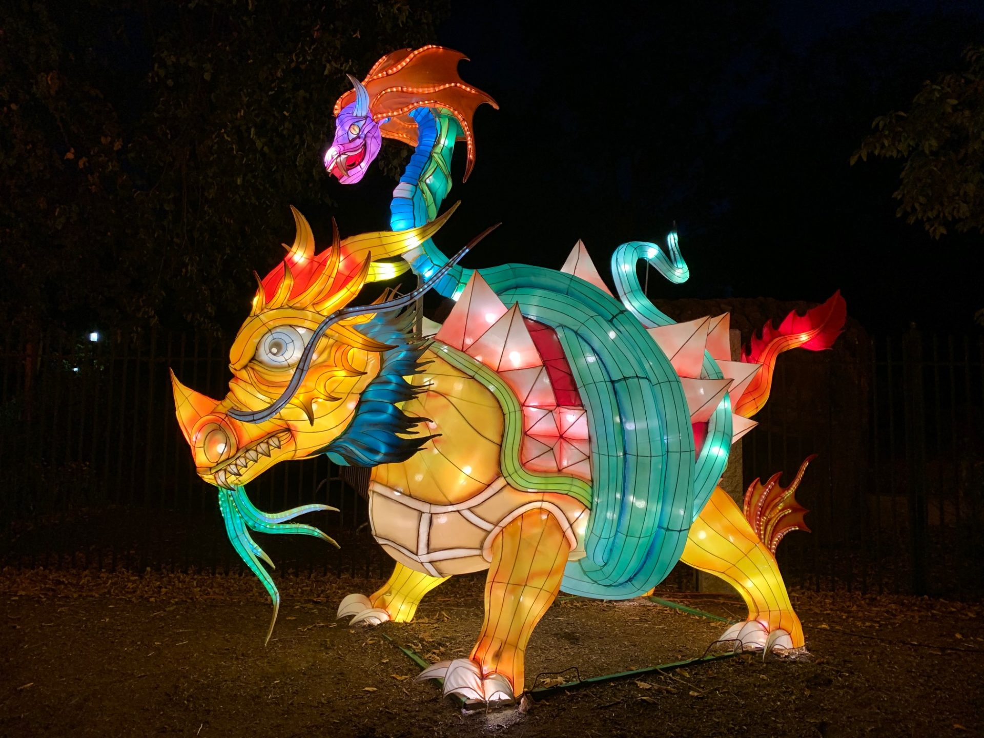 Boston Lights at the Franklin Park Zoo will impress visitors with more than 50 large displays comprised of hundreds of colorful lanterns.